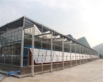 宜宾烟草公司智能玻璃温室