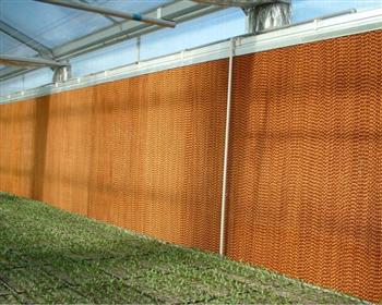 建川公司简析亚搏app安卓温室除湿的方法技巧